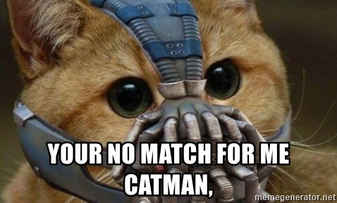 bane cat -  YOUR NO MATCH FOR ME CATMAN,