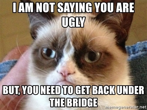 Angry Cat Meme - I am not saying you are ugly but, you need to get back under the bridge