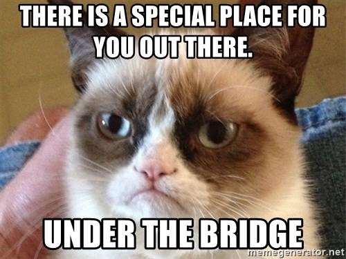 Angry Cat Meme - There is a special place for you out there.  under the bridge