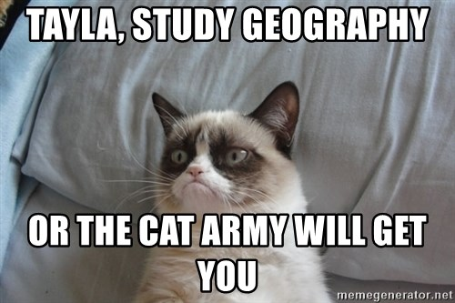 Grumpy cat good - Tayla, study Geography or the cat army will get you