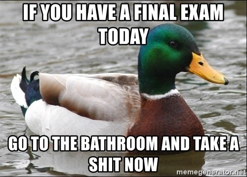 Actual Advice Mallard 1 - if you have a final exam today go to the bathroom and take a shit now