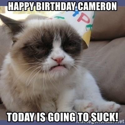 Birthday Grumpy Cat - Happy birthday cameron Today is goiNg to suck!