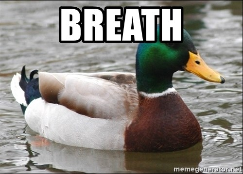 Actual Advice Mallard 1 - BREATH