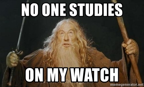 You shall not pass - NO ONE STUDIES ON MY WATCH