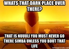 The Lion King - WHATS THAT DARK PLACE OVER THERE? THAT IS NUUULI YOU MUST NEVER GO THERE SIMBA UNLESS YOU BOUT THAT LIFE