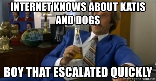 That escalated quickly-Ron Burgundy - Internet knows about katis and dogs boy that escalated quickly