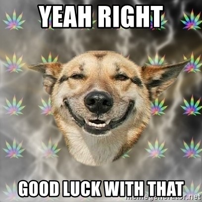 Stoner Dog - Yeah Right Good Luck With THat