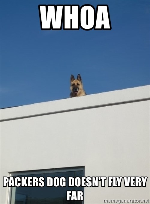 Roof Dog - whoa packers dog doesn't fly very far