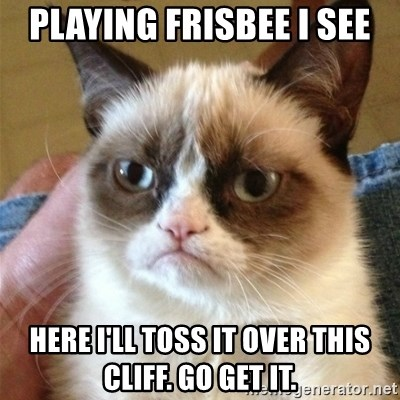 Grumpy Cat  - playing frisbee I see here I'll toss it over this cliff. go get it.