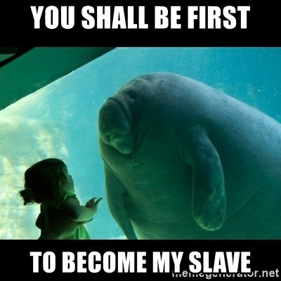 Overlord Manatee - you shall be first to become my slave
