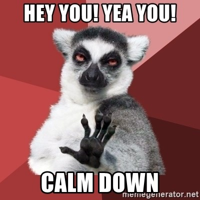 Chill Out Lemur - Hey you! Yea you! Calm down