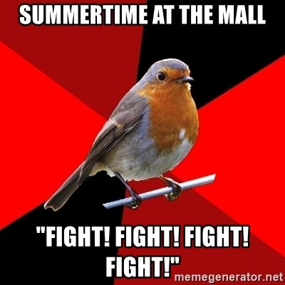 "Retail Robin - summertime at the mall ""fight! fight! fight! fight!"""