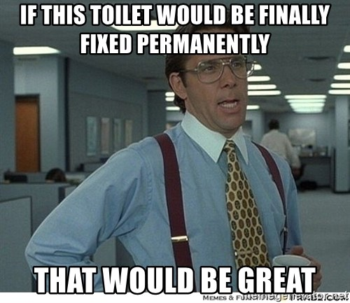 That would be great - if THIS TOILET WOULD BE FINALLY FIXED PERMANENTLY THAT WOULD BE GREAT