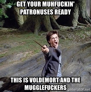 Pissed off Harry - get your muhfuckin'      patronuses ready this is VOLDEMORT AND THE MUGGLEFUCKERS
