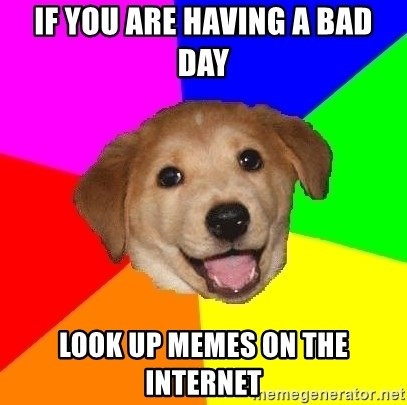 Advice Dog - If you are having a bad day Look up memes on the internet