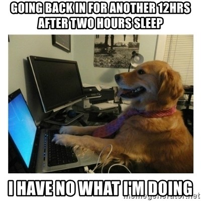 No Computer Idea Dog - GOING BACK IN FOR ANOTHER 12HRS AFTER TWO HOURS SLEEP I HAVE NO WHAT i'M DOING