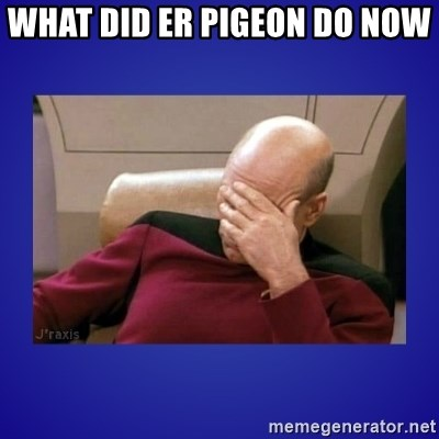 Picard facepalm  - WHAT DID ER PIGEON DO NOW