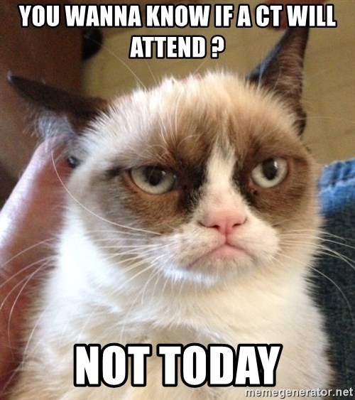 Grumpy Cat 2 - You wanna Know if a CT will attend ? Not today