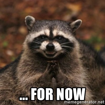 evil raccoon -  ... for now