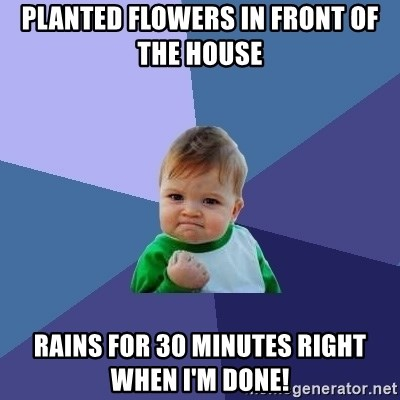 Success Kid - planted flowers in front of the house rains for 30 minutes right when I'm done!