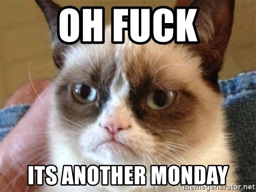 Angry Cat Meme - oh fuck its another monday