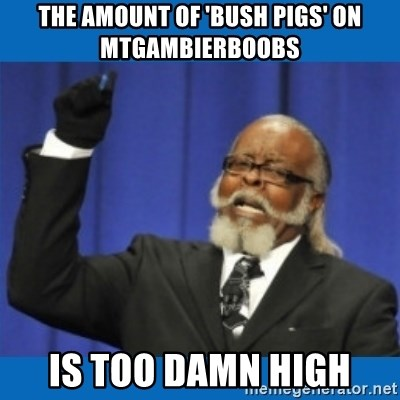 Too damn high - The amount of 'bush pigs' on Mtgambierboobs  is too damn high
