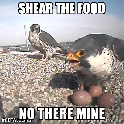 #CEFalcons - SHEAR THE FOOD NO THERE MINE