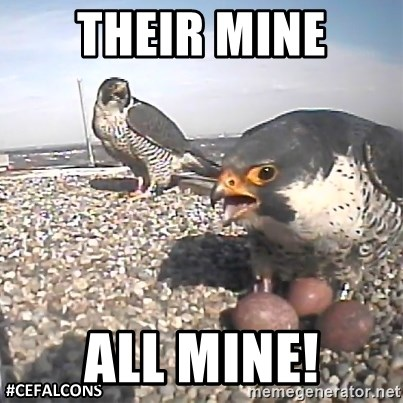 #CEFalcons - THEIR MINE ALL MINE!