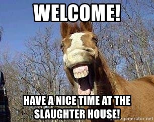 Horse - Welcome! Have a nice time at the slaughter house!