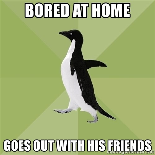 Socially Average Penguin - bored at home goes out with his friends