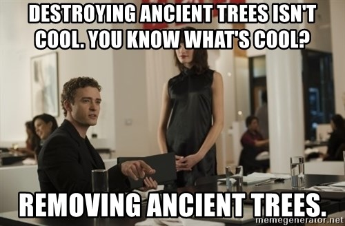 sean parker - destroying ancient trees isn't cool. you know what's cool? removing ancient trees.