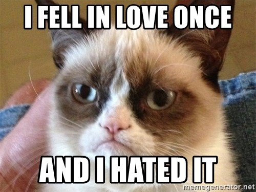 Angry Cat Meme - i fell in love once and i hated it