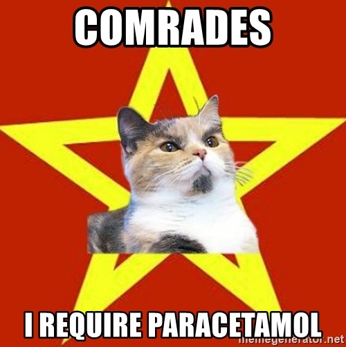 Lenin Cat Red - COmrades I require paracetamol