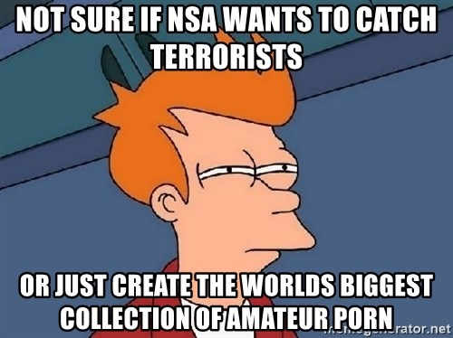 FRY FRY - Not sure if NSA wants to catch terrorists or just create the worlds biggest collection of amateur porn