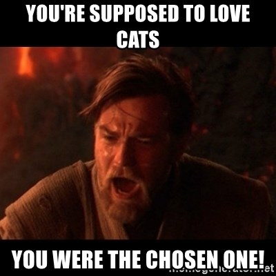You were the chosen one  - You're supposed to love cats You were the chosen one!