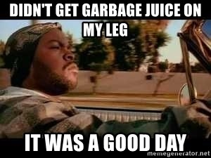 It was a good day - Didn't get garbage juice on my leg it was a good day
