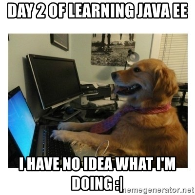 No Computer Idea Dog - Day 2 of learning Java EE I have no idea what I'm doing :|