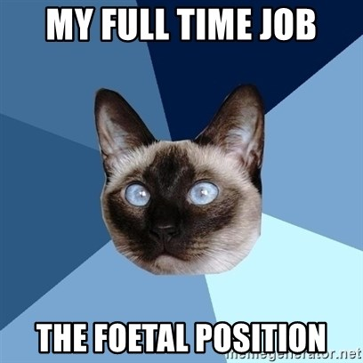 Chronic Illness Cat - My full time job The foetal position