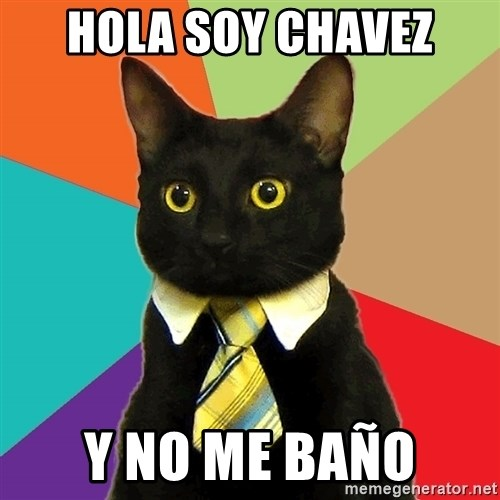 Business Cat - hola soy chavez y no me baño