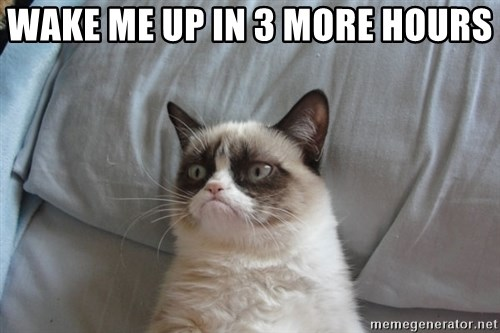 Grumpy cat good - WAKE ME UP IN 3 MORE HOURS