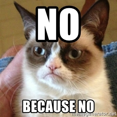 Grumpy Cat  - NO BECAUSE NO