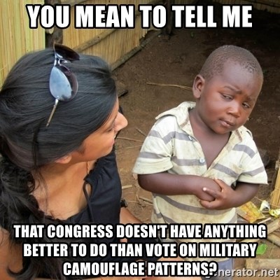 you mean to tell me black kid - YOU MEAN TO TELL ME THAT CONGRESS DOESN'T HAVE ANYTHING BETTER TO DO THAN VOTE ON MILITARY CAMOUFLAGE PATTERNS?