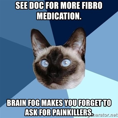 Chronic Illness Cat - See doc for more fibro medication. Brain fog makes you forget to ask for painkillers.