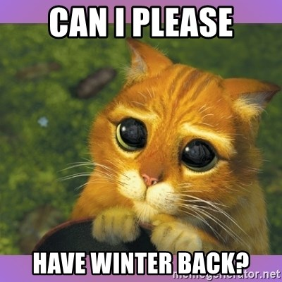 Apologetic Puss In Boots - CAN I PLEASE HAVE WINTER BACK?
