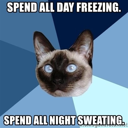 Chronic Illness Cat - Spend all day freezing. spend all night sweating.