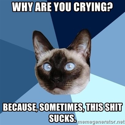 Chronic Illness Cat - Why are you crying? Because, sometimes, this shit sucks.
