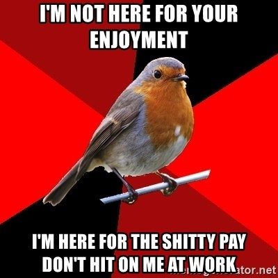 Retail Robin - I'm not here for your enjoyment I'm here for the shitty pay    don't hit on me at work