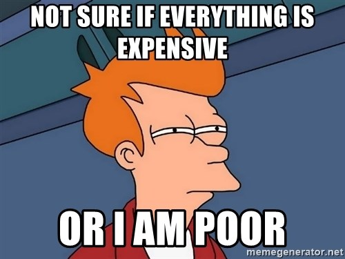 Futurama Fry - not sure if everything is expensive or i am poor