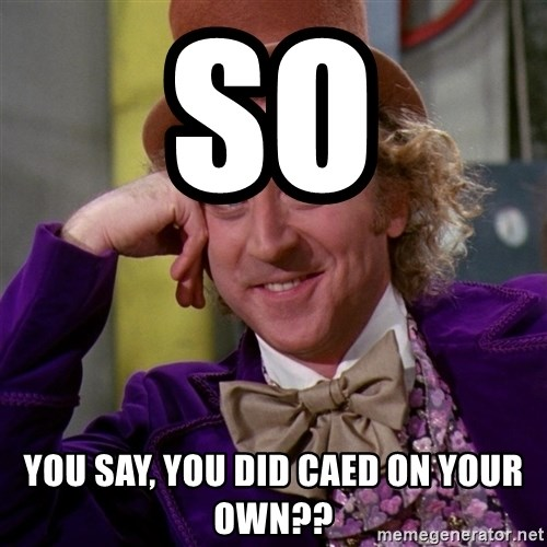 Willy Wonka - so you say, you did caed on your own??