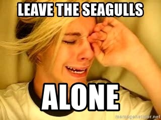 leave britney alone - leave the seagulls alone
